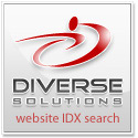 diverse-solutions-logo-125