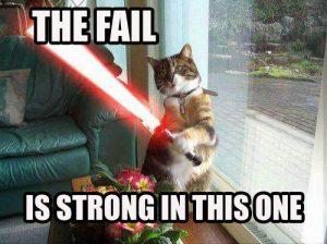 fail-strong-cat